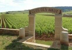 Vins de Bourgogne_ Porte des Avaux_Beaune Credits LDallerey