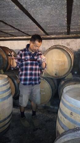 斉藤政一さんが到達点をめざすのは、やはり赤ワイン。