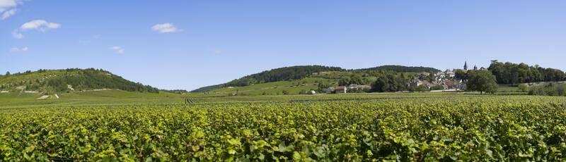 Le Pays Beaunois : des paysages d'exception ©OTI-I&A