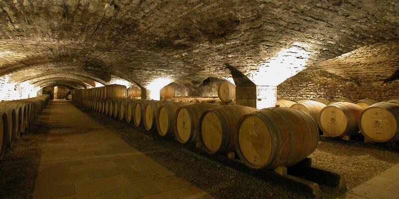 Cave, Château de Chassagne, Montrachet